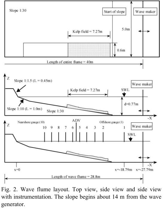 Modeling wave attenuation by vegetation (1D) — XBeach pre-1 22 4344